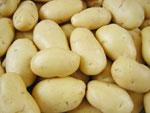 mesin-pengupas-kentang-dan-ubi-pusatmesin