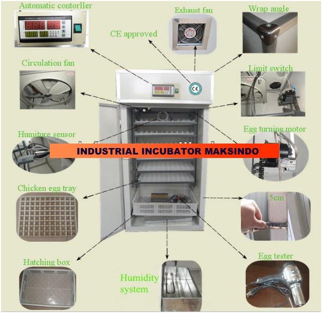 mesin-tetas-telur-industri-maksindi-3