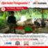 Lumbung Ternak Masyarakat : Mesin Perajang Rumput Gajah Maksindo Memuaskan