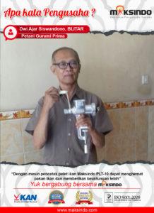 Petani Gurami Prima : Lebih Hemat dan Untung Dengan Pencetak Pelet Ikan Maksindo